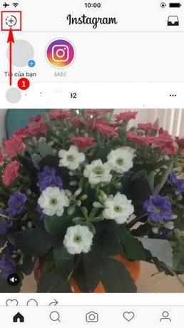 Phát trực tiếp video trên Instagram