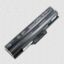 Pin Laptop Sony VGP-BPS13 VGP-BPS21 VGP-BPL13